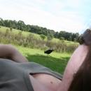 Valeni se v parku .. v zatisi neco jako slepice  :)