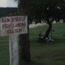 Fish landing station
